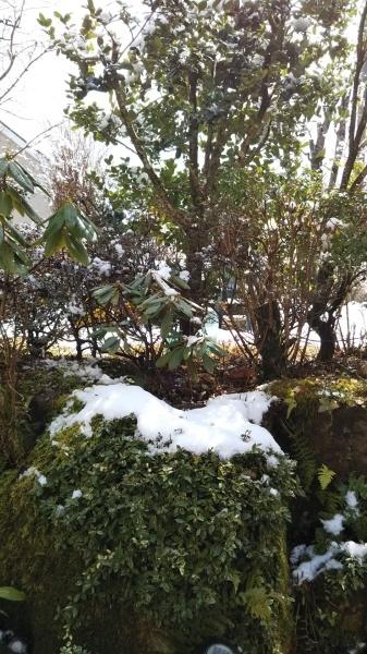 この冬はじめての雪景色_e0262382_21060591.jpg