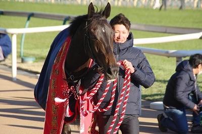 東京新聞杯は牝馬のワンツー、プリモシーンが差し切り重賞3勝目を飾る_b0015386_23123407.jpg