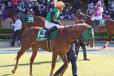 東京新聞杯は牝馬のワンツー、プリモシーンが差し切り重賞3勝目を飾る_b0015386_23130971.jpg