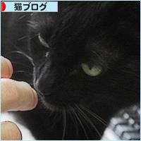 ブラック企業_a0389088_19402205.jpg