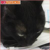 ブラック企業_a0389088_19402252.jpg