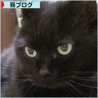 新たなカイカン・・・_a0389088_21090021.jpg