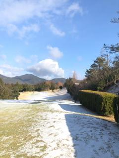 雪景色_a0233991_20115241.jpg