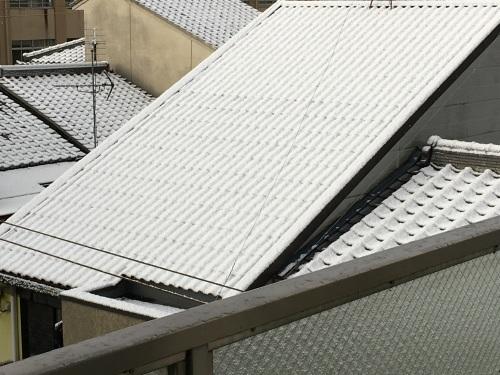 この冬初の積雪_f0347891_15105164.jpeg