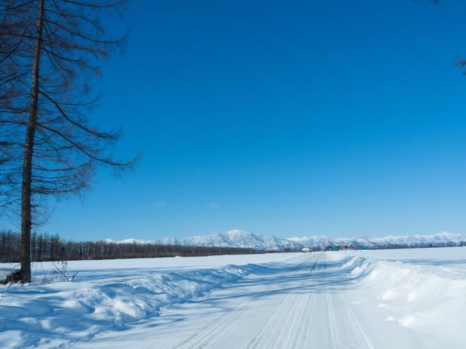 今季最高の冷え込み・・快晴で日高山脈がきれいに望めます。_f0276498_11355202.jpg