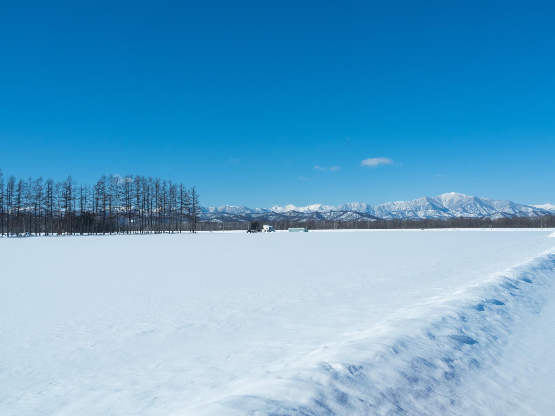 今季最高の冷え込み・・快晴で日高山脈がきれいに望めます。_f0276498_11361251.jpg