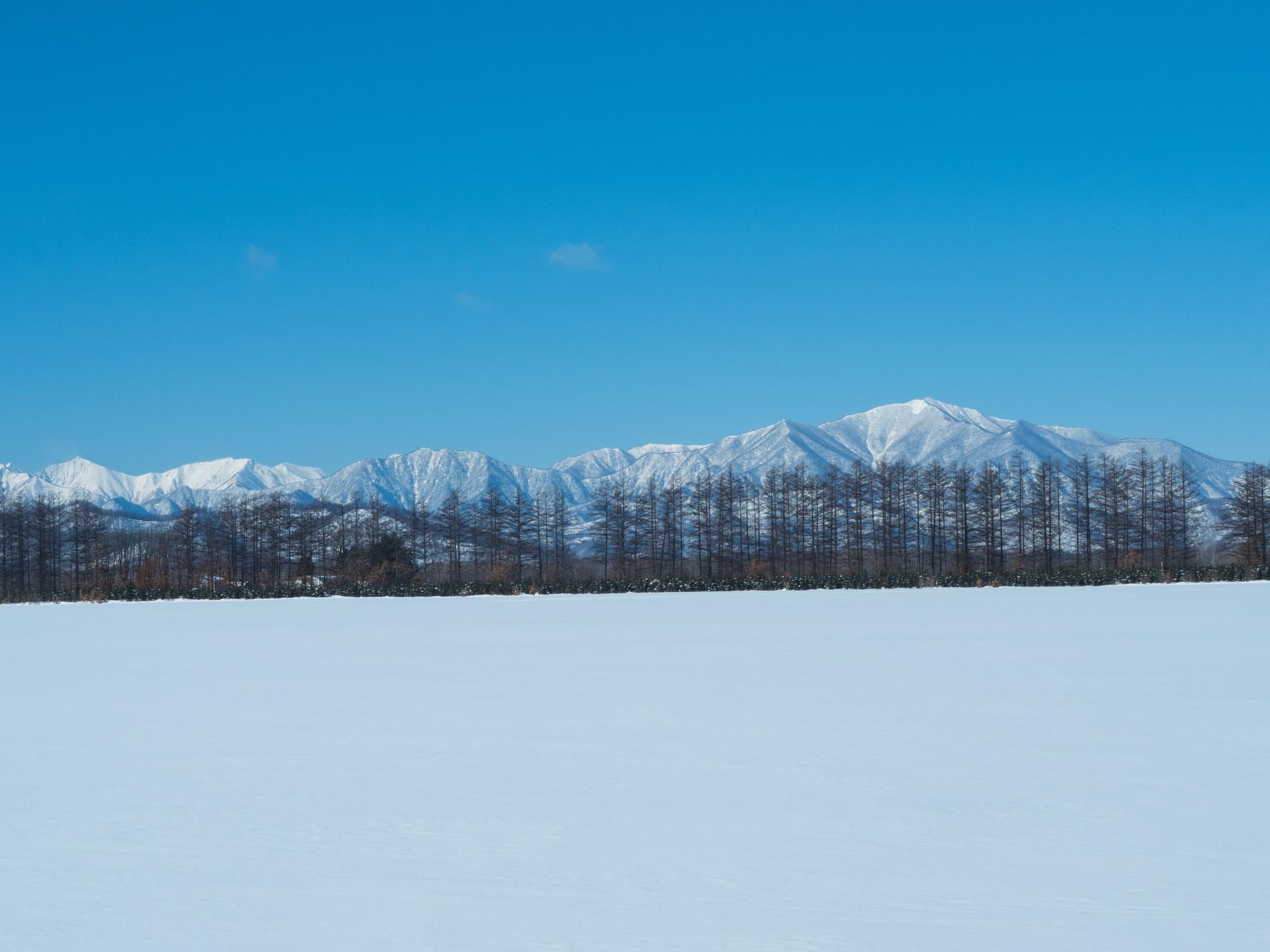 今季最高の冷え込み・・快晴で日高山脈がきれいに望めます。_f0276498_11362911.jpg