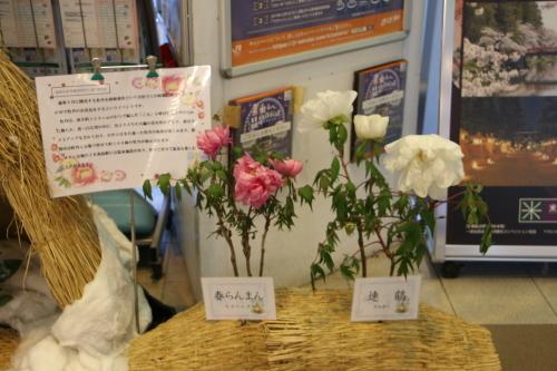 朝の米沢駅 2020.2.10_c0075701_07491111.jpg