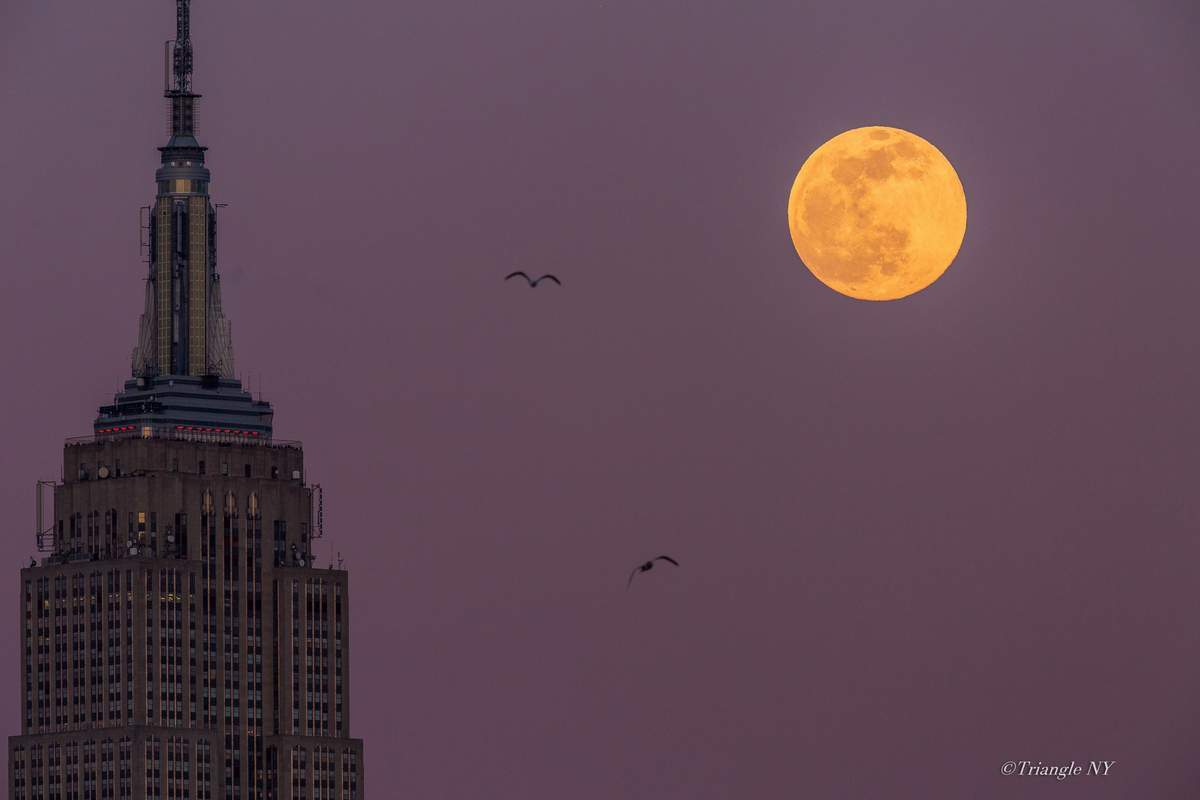 Fourth Super Snow Moon 2020_a0274805_03442771.jpg