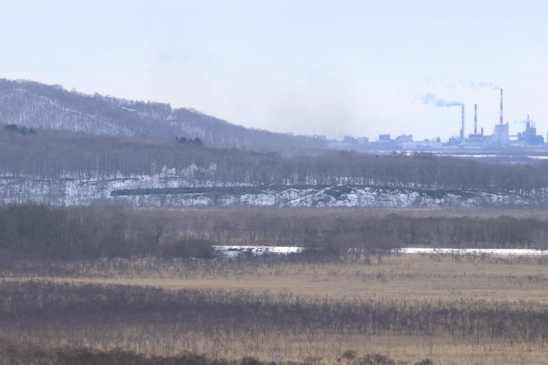 釧路の煙突を後に湿原へ - 2020年・釧網線 -_b0190710_21581785.jpg