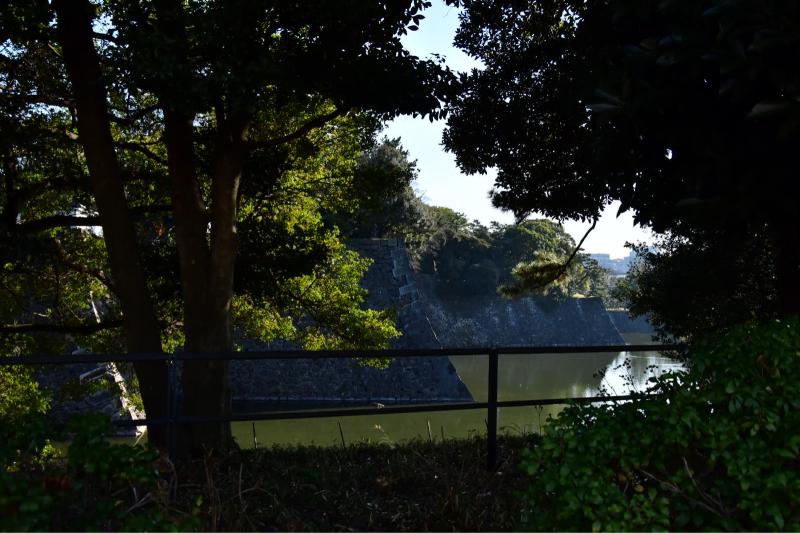 竹林へ 続き_b0223512_00342623.jpg