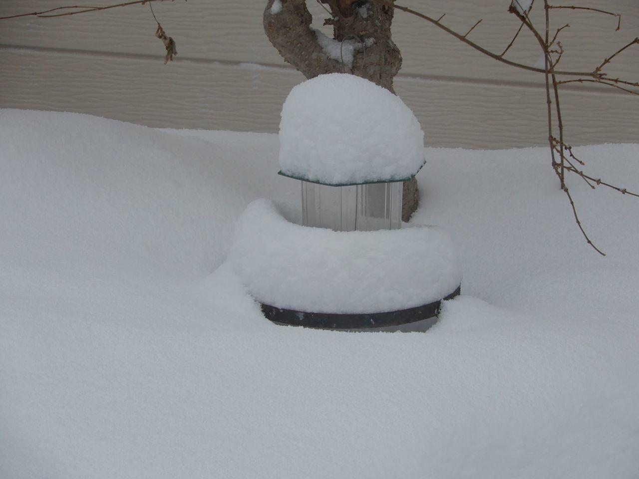 この冬の底は抜けたようですが_c0025115_22165247.jpg