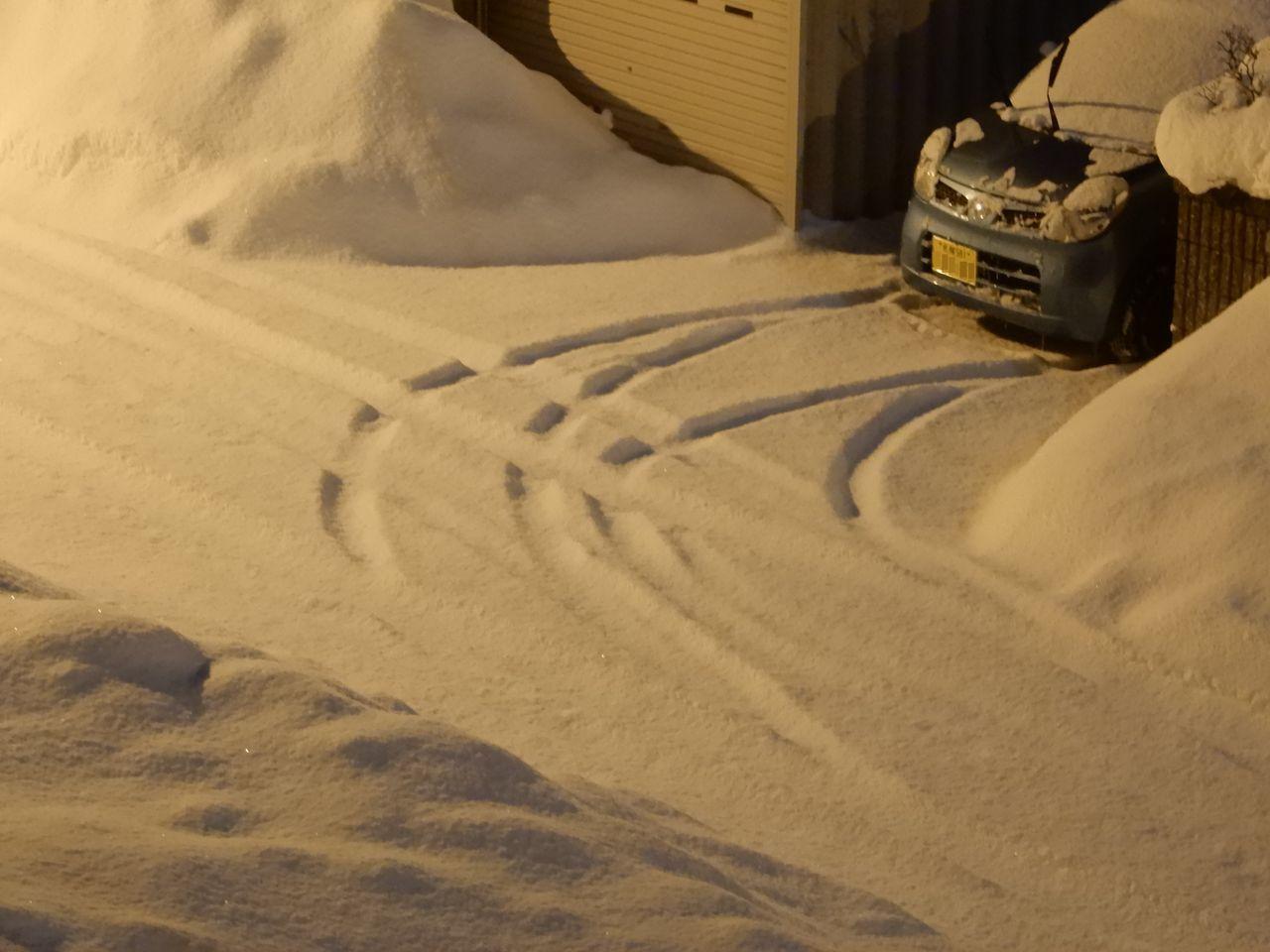 この冬の底は抜けたようですが_c0025115_22210685.jpg