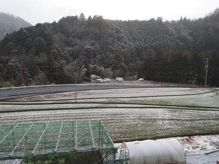 薄っすら雪景色_c0116915_00190034.jpg
