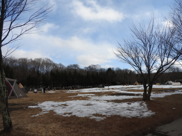 真冬から春の気温へ(2020年2月10日)_b0174425_16220726.jpg