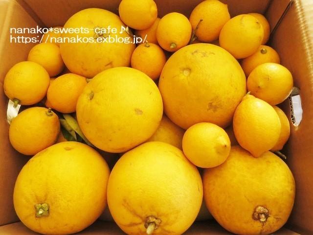 晩白柚のピール_d0147030_21103753.jpg
