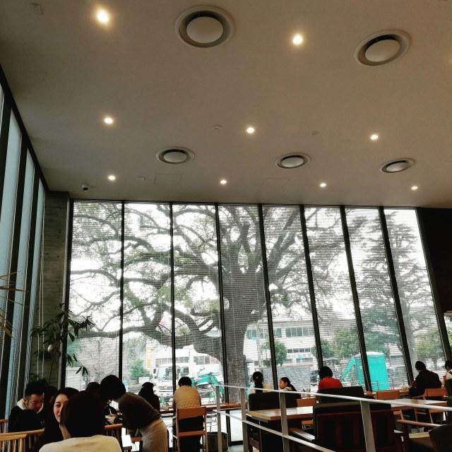 大きな木が見えるカフェ_b0207631_09444804.jpg