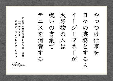日本でオーバースペックなのに売れたBOW BRAND_a0201132_08304243.png