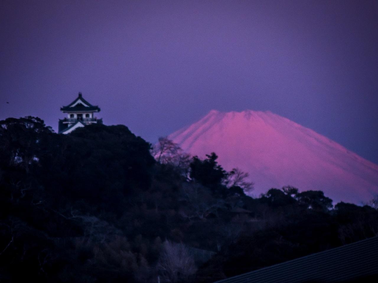 2020.2.9パール富士と館山城(館山市)_e0321032_14534176.jpg