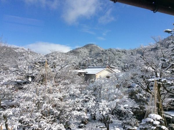 今季2度目の積雪_f0289632_07274264.jpg