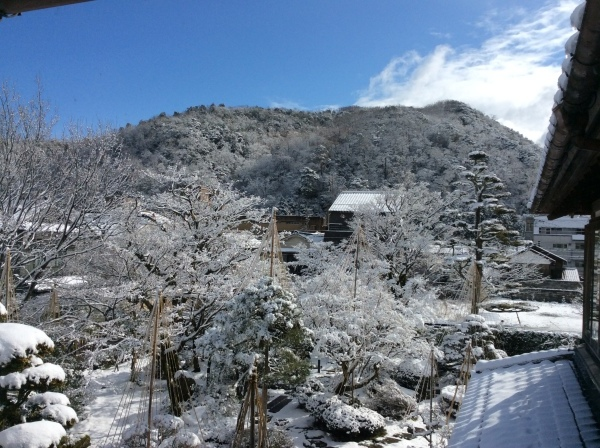 今季2度目の積雪_f0289632_07280043.jpg