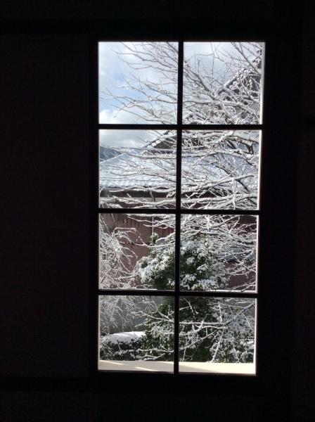 今季2度目の積雪_f0289632_07283473.jpg