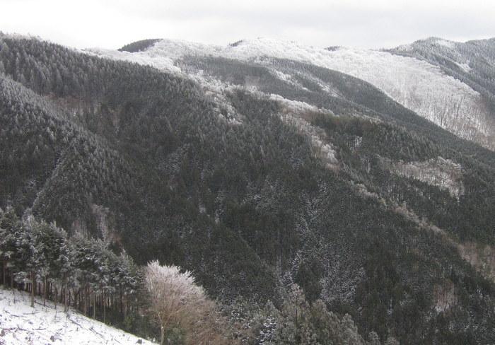 霧氷を求めて高見山へ_c0038434_21301316.jpg
