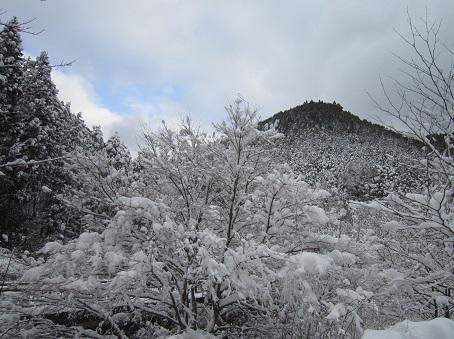 京都のお山で雪あそび(2)_b0177436_20251201.jpg