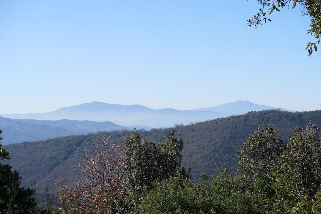 青い空 青い山 青いトラジメーノ湖_f0234936_8564226.jpg