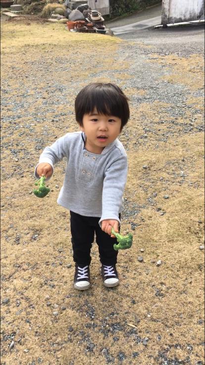TUTi畑とブロッコリー踊り_d0386342_10081856.jpg
