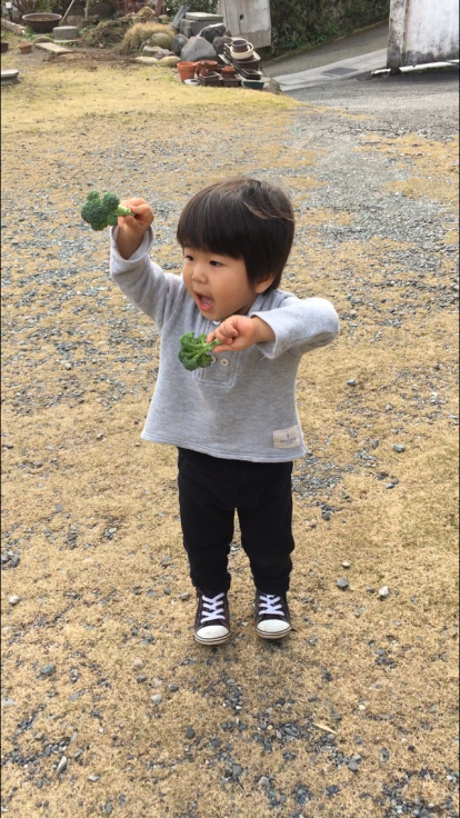 TUTi畑とブロッコリー踊り_d0386342_10082146.jpg
