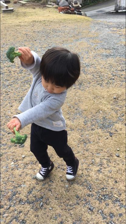 TUTi畑とブロッコリー踊り_d0386342_10082511.jpg