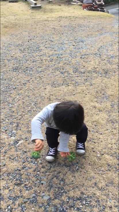 TUTi畑とブロッコリー踊り_d0386342_10082827.jpg