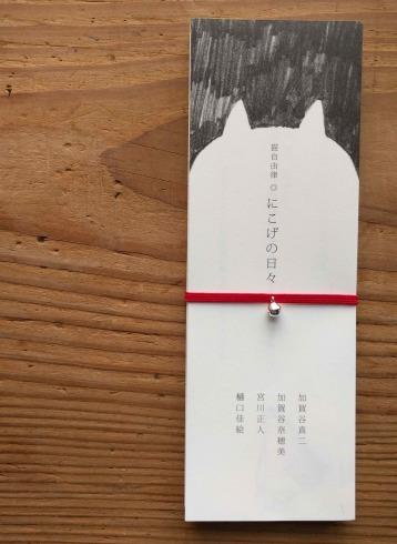 盛岡の猫1_a0265743_00135279.jpg