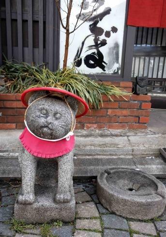 盛岡の猫2_a0265743_21441010.jpg