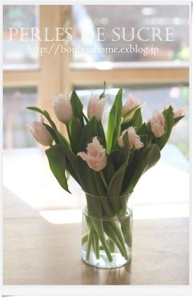 春・・_f0199750_21244776.jpg
