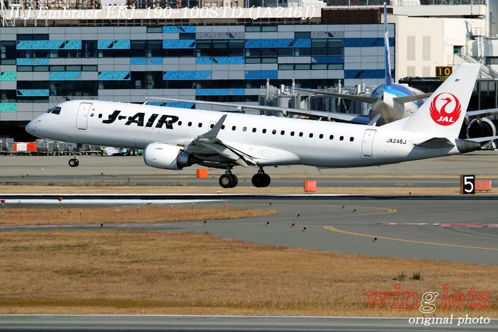'20年 伊丹空港レポート・・・JLJ/JA246J_f0352866_2154522.jpg