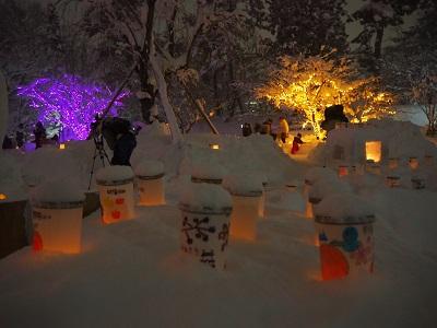 弘前城雪燈籠まつり_2020.02.08_d0131668_1792427.jpg