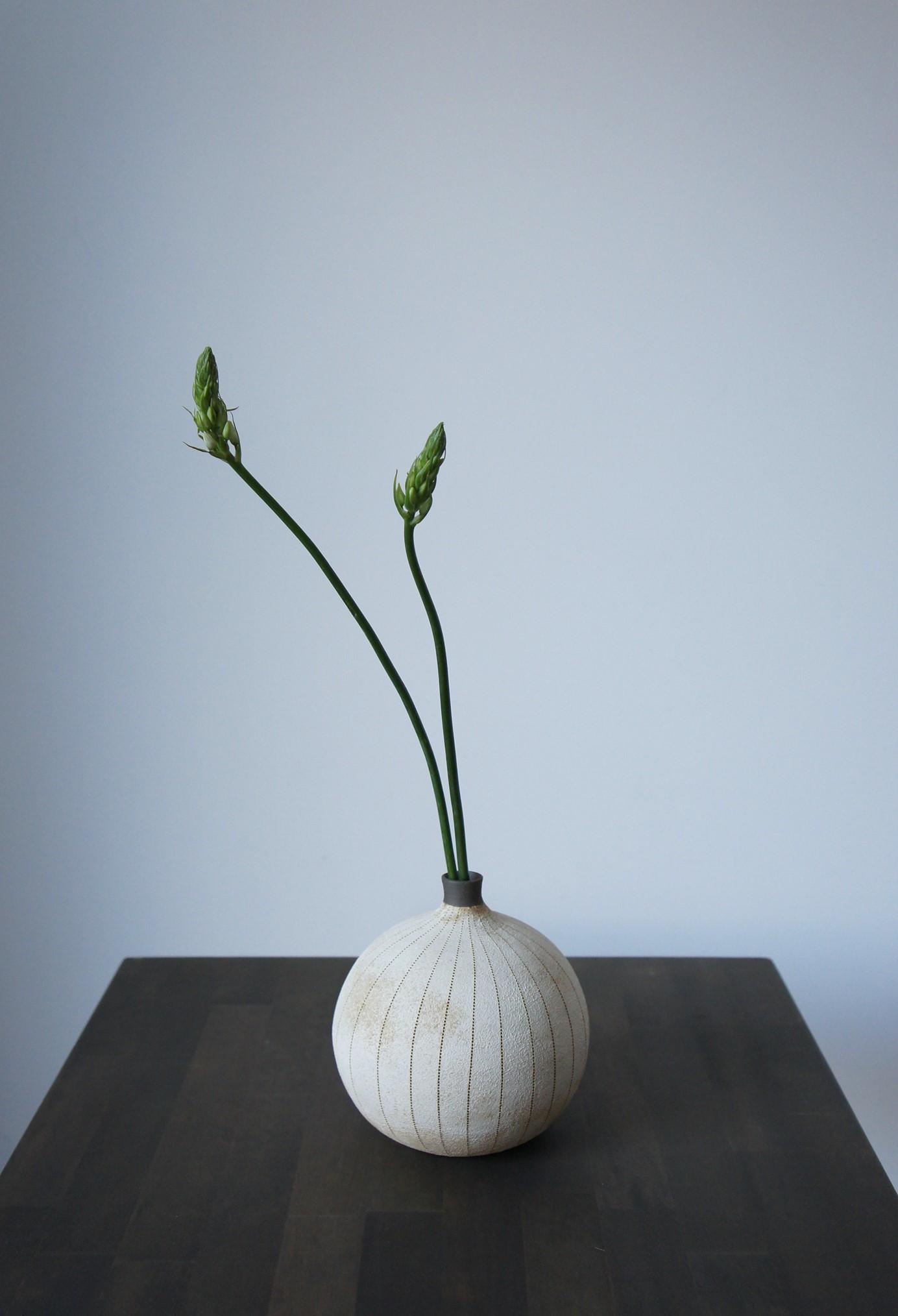 Bocciolo展 矢嶋洋一さんのまんまる花器白 DM作品_b0353974_18490647.jpg