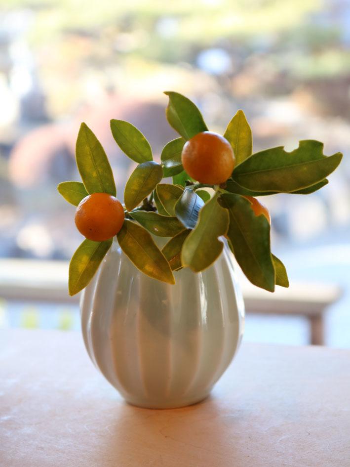 金柑と日本水仙を飾って 〜2月半ばの店内〜_c0334574_19485599.jpeg