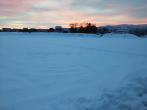 朝日と雪景色_b0126182_13275668.jpg
