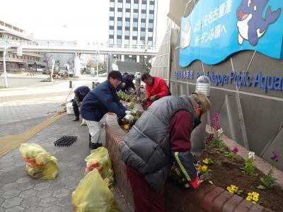 ガーデンふ頭総合案内所前花壇の植替えR2.2.10_d0338682_16522399.jpg