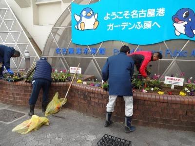 ガーデンふ頭総合案内所前花壇の植替えR2.2.10_d0338682_16551172.jpg
