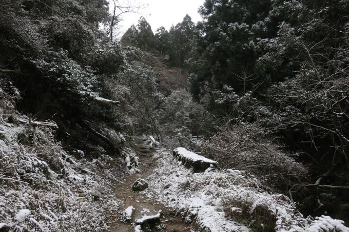 雪を求めて。母の愛編。_e0149587_04370249.jpeg
