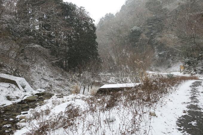雪を求めて。母の愛編。_e0149587_04401403.jpeg