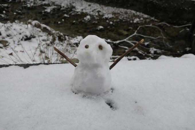 雪を求めて。母の愛編。_e0149587_04403130.jpeg