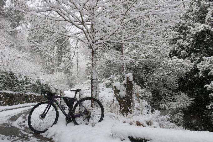 雪を求めて。親の愛編。_e0149587_04592676.jpeg