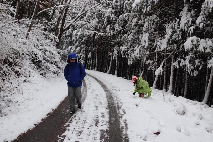 雪を求めて。親の愛編。_e0149587_05082310.jpeg