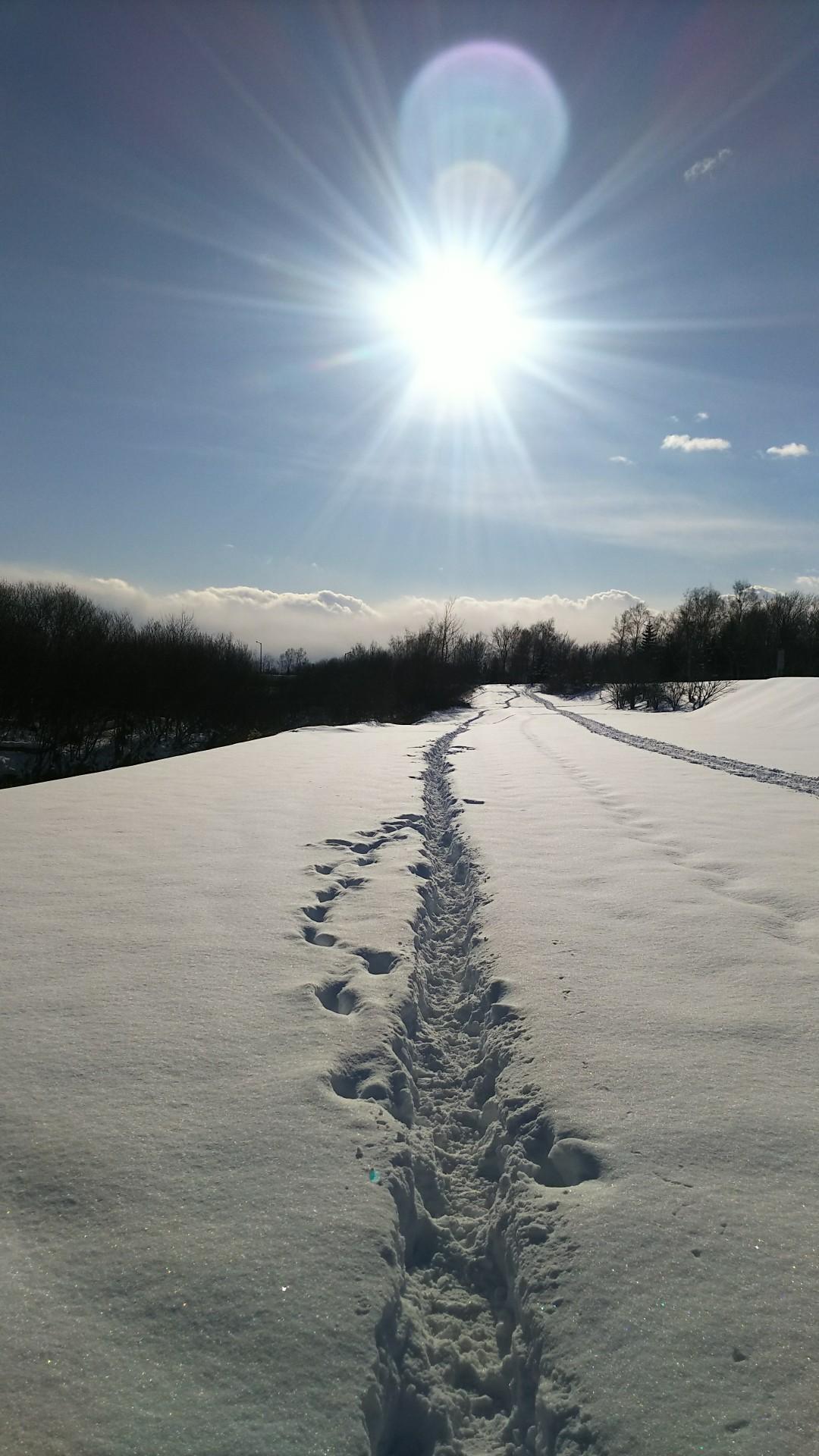 雪はふるふる、雪は降る_b0343293_22011138.jpg