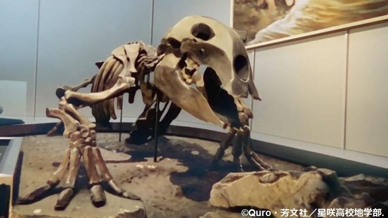 「恋する小惑星」舞台探訪004-1/3 第4話 つくば駅周辺、そして地質標本館へ_e0304702_08023984.jpg